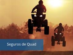 Seguro de Quad y ATV - Motopoliza.com