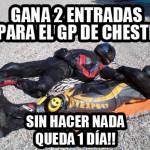 ENTRADAS-CHESTE-dia-5ok