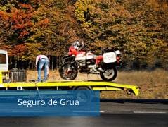 Seguro de Asistencia en carretera (grua)